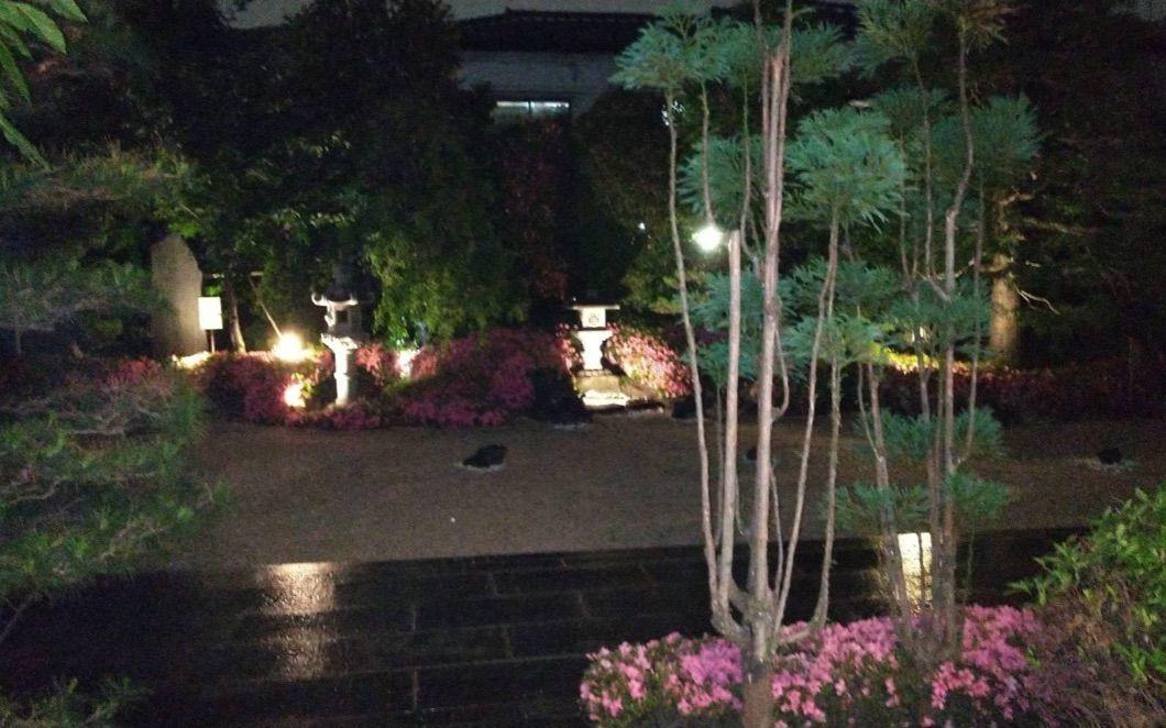 枯山水の庭 (夜)